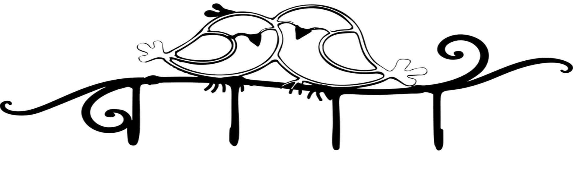Passar rindo (amor de passarinho)